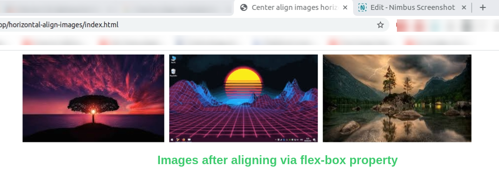 how to align multiple images in html horizontally